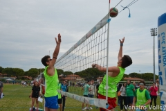 Park Volley Junior 2017 (511)