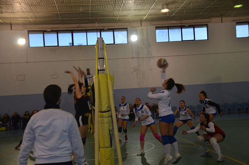 2016-03-12 - SDF - Axa Lanni Venafro Volley vs Fisiopro Nuova Pallavolo Campobasso foto1